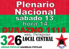 plenario nacional